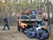 Вывоз и утилизация строительного мусора.272-69-16